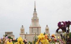 Фото с сайта msu.ru