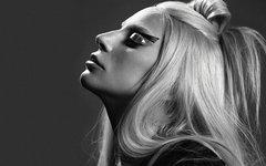 Lady GaGa. Фото с офстраницы певицы в Facebook