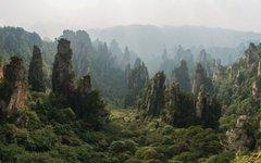 Фото chensiyuan с сайта wikimedia.org