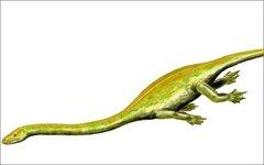 Диноцефалозавр. Изображение Nobu Tamura с сайта wikimedia.org