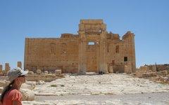 Пальмира. Фото с сайта pixabay.com