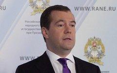 Дмитрий Медведев © KM.RU, Алексей Белкин
