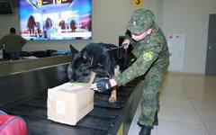 Фото с сайта sh.customs.ru