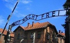 Ворота Освенцима. Фото с сайта shalomlife.com
