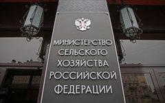 Министерство сельского хозяйства РФ © KM.RU, Илья Шабардин