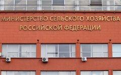 Здание Минсельхоза © KM.RU, Илья Шабардин