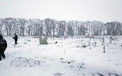 "Крушение Ан-148 Фото: ГКУ МО ""Мособлпожспас"""