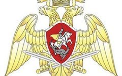 Эмблема Росгвардии. Фото с сайта rosgvardija.ru