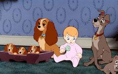 Кадр из фильма «Леди и Бродяга». Фото с сайта kinopoisk.ru