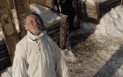 Кадр из фильма «Царь-птица». Фото с сайта kino-teatr.ru