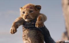 Поддержанные Минкультом ленты собрали за год меньше «Короля Льва»