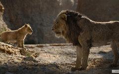 Новый «Король Лев» оказался самым кассовым анимационным фильмом в истории