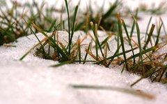 В воскресенье в столице может выпасть первый снег
