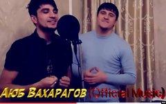 Поп-певцов братьев Вахарговых арестовали в Чечне за сомнительные песни