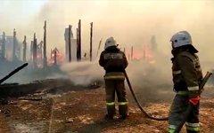 Пожар в Самарской области
