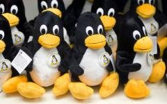 Как и следовало ожидать, основой «национальной ОС» станет ядро Linux