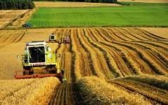 Ведь именно сельское хозяйство руководство холдинга рассматривает как...