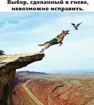 http://ic1.static.km.ru/sites/default/files/imagecache/400x400/image_24.jpg