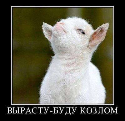 kozlom1437011403_demotivatory_18.jpg