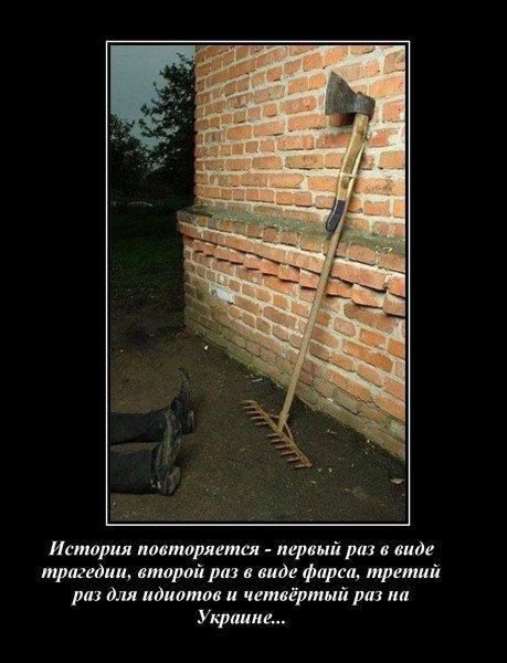http://ic1.static.km.ru/sites/default/files/imagecache/640x640/89383_600_1.jpg