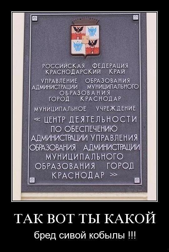 http://ic1.static.km.ru/sites/default/files/imagecache/640x640/admin_kh7wobdy8die_0.jpg