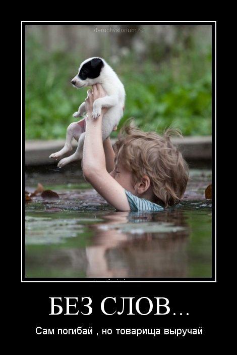 <p>Mirk, bet draugą gelbėk!</p>...