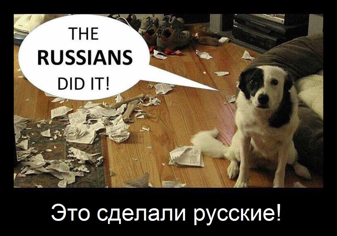 Книга по русскому языку 5 класс ладыженская 1 часть читать